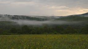 Paysage brumeux en nature Images libres de droits