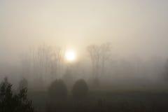 Paysage brumeux et sombre avec le soleil riseing Photos stock
