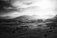 Paysage brumeux im de beau lever de soleil noir et blanc d'Autumn Fall Photos libres de droits
