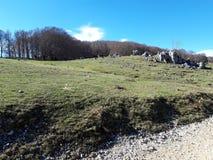 Paysage bucolique près de Rome, Campaegli image libre de droits