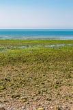 Paysage côtier du Sussex photos stock