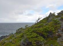 Paysage côtier un jour pluvieux photos libres de droits
