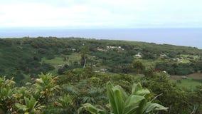 Paysage côtier d'Hawaï banque de vidéos