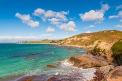 Paysage côtier du Nouvelle-Zélande Images libres de droits