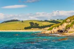 Paysage côtier du Nouvelle-Zélande Photo libre de droits