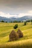 Paysage carpathien Image libre de droits
