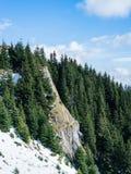 Paysage Carpathiens de montagne Photo libre de droits