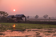 Paysage Chaiyaphum en Thaïlande Photos libres de droits
