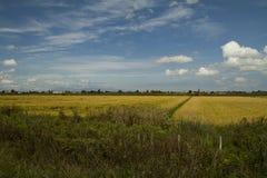 Paysage, champs et village naturels - image courante Image libre de droits