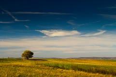 Paysage chaud dans Fagaras Photographie stock libre de droits