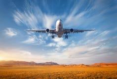 Paysage coloré avec l'avion de passager Image libre de droits