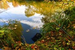 Paysage coloré d'automne un jour ensoleillé avec des arbres avec l'eau et des nuages Photos stock