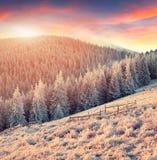 Paysage coloré d'hiver en montagnes Photographie stock libre de droits
