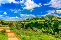 Paysage coloré dans Zagorje, l'Europe Image libre de droits