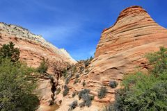 Paysage coloré et montagnes, Zion National Park, Etats-Unis Image libre de droits