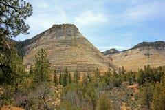 Paysage coloré et montagnes, Zion National Park, Etats-Unis Images stock