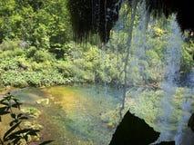 Paysage coloré et vibrant de rivage de lac Paysage tranquille utile comme fond Abaissez le canyon de lacs Lacs Plitvice nationaux Photographie stock libre de droits