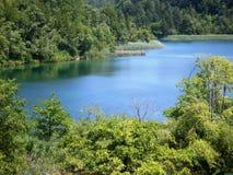 Paysage coloré et vibrant de rivage de lac Paysage tranquille utile comme fond Abaissez le canyon de lacs Lacs Plitvice nationaux Photos stock
