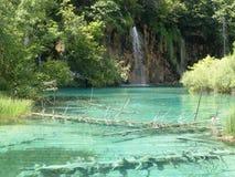 Paysage coloré et vibrant de rivage de lac Paysage tranquille utile comme fond Abaissez le canyon de lacs Lacs Plitvice nationaux Image stock