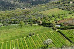 Paysage coloré stupéfiant de printemps dans le chianti, Toscane l'Italie photo stock