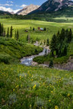 Paysage crêté et wildflowers de montagne du Colorado de butte Photos stock