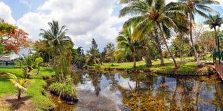 Paysage cubain de pays Image libre de droits