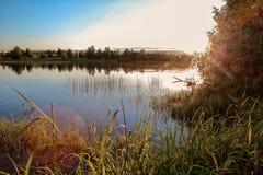 Paysage d'été à la rivière Photo stock