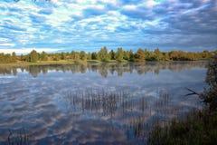 Paysage d'été à la rivière Images libres de droits