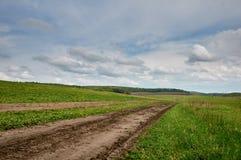 Paysage d'été avec l'herbe, la route et les nuages photos stock