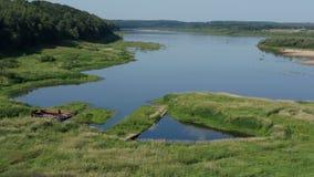 Paysage d'été avec la rivière et la forêt banque de vidéos