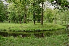 Paysage d'été avec la rivière et la forêt Photographie stock libre de droits