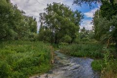 Paysage d'été avec la rivière près de Norcia, Italie Photo stock