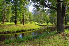 Paysage d'été avec le lac dans le jardin de Gatchina, images libres de droits
