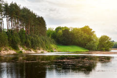 Paysage d'été avec le lac de forêt Photos stock