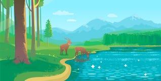 Paysage d'été avec le lac et les cerfs communs illustration stock