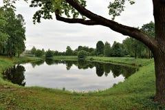 Paysage d'été avec le lac, la forêt et le ciel nuageux Photo libre de droits