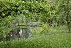 Paysage d'été avec le pont, la forêt et la rivière Image libre de droits