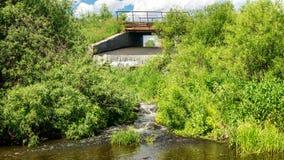 Paysage d'été avec un courant et végétation verte sur les banques, Russie, Ural Photographie stock
