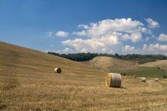 Paysage d'été dans la région Toscane de chianti photo stock