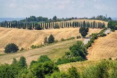 Paysage d'été dans la région Toscane de chianti photos stock