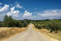 Paysage d'été dans la région Toscane de chianti images libres de droits