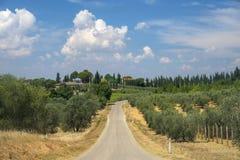 Paysage d'été dans la région Toscane de chianti photographie stock