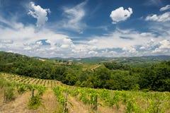 Paysage d'été dans la région Toscane de chianti photos libres de droits