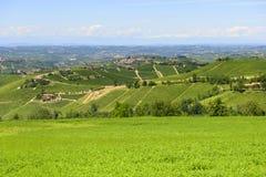 Paysage d'été dans Langhe (Italie) Photographie stock