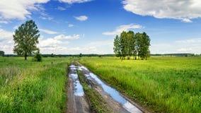 Paysage d'été dans le domaine avec la route de campagne et les arbres, Russie Photographie stock libre de droits