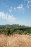 Paysage d'été dans les collines de Malvern dans la campagne britannique photos libres de droits