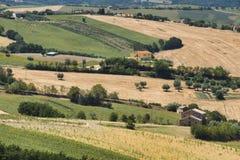 Paysage d'été en Marches Italie près d'Ostra Images stock