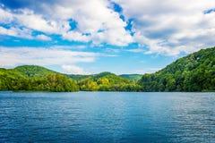 Paysage d'ÉTÉ Lacs Plitvice Images stock