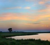Paysage d'été tôt le matin à un rivage d'étang Photographie stock libre de droits