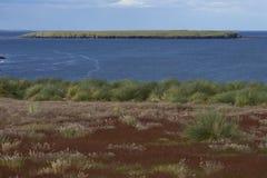 Paysage d'été d'une île plus morne Photographie stock libre de droits